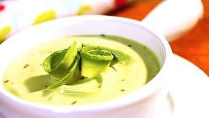 sopa-fria-de-aguacate