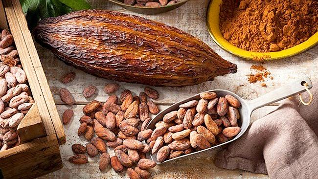 Recetas con Cacao y Chocolate Venezolano