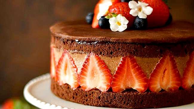 fraisiere-chocolate
