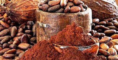 cacao-artesanal